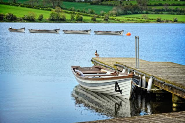 Fishing In Armagh