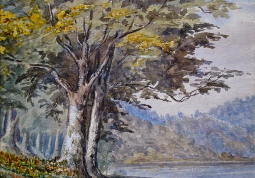 ARMCM.49.1936_Folly Lake_Margaret Wray